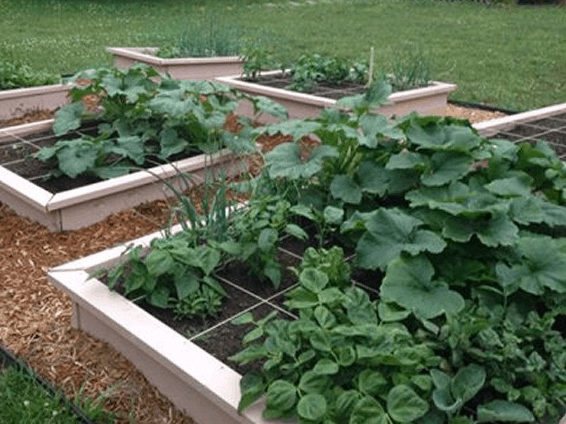 Build a 16 sqft raised garden bed for less than 20 for Building a raised garden