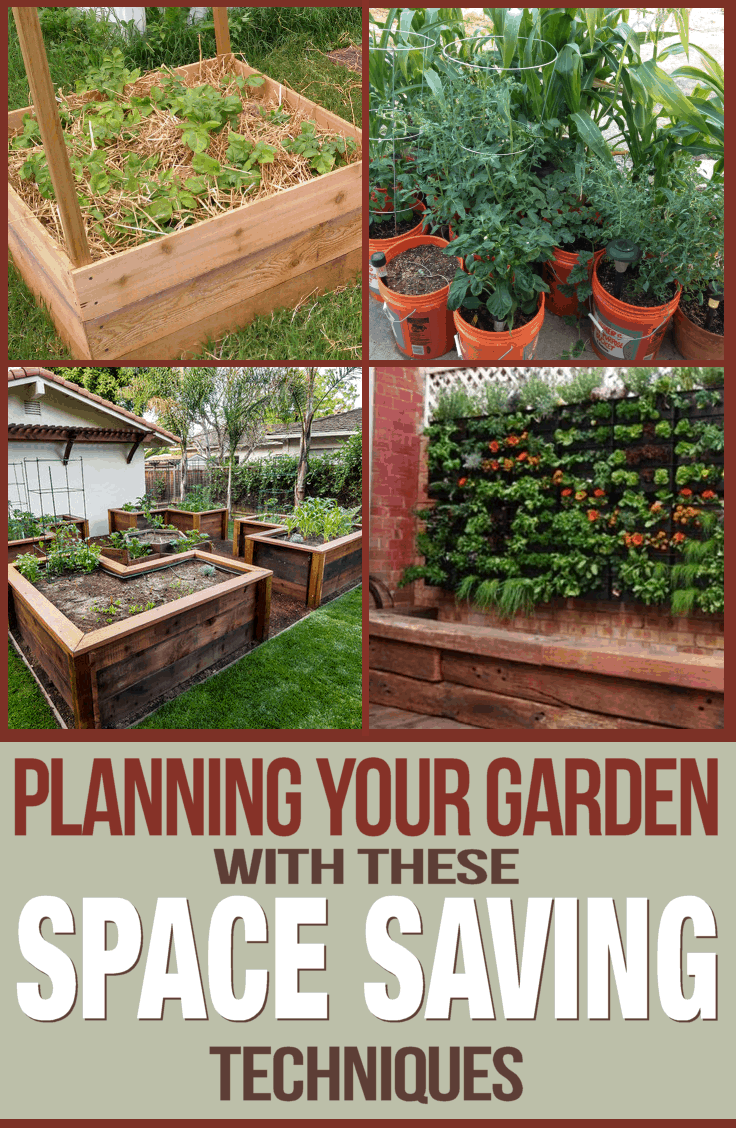 Planning your garden with space saving techniques for Planning your vegetable garden