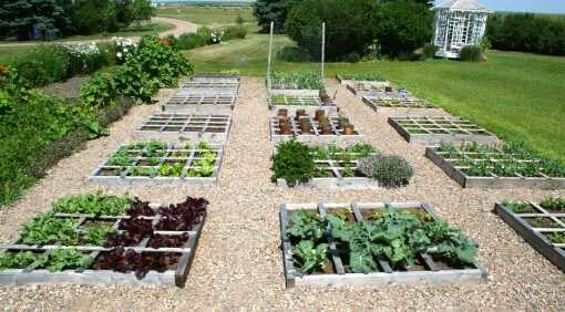 Square foot gardening 101 for Square garden designs
