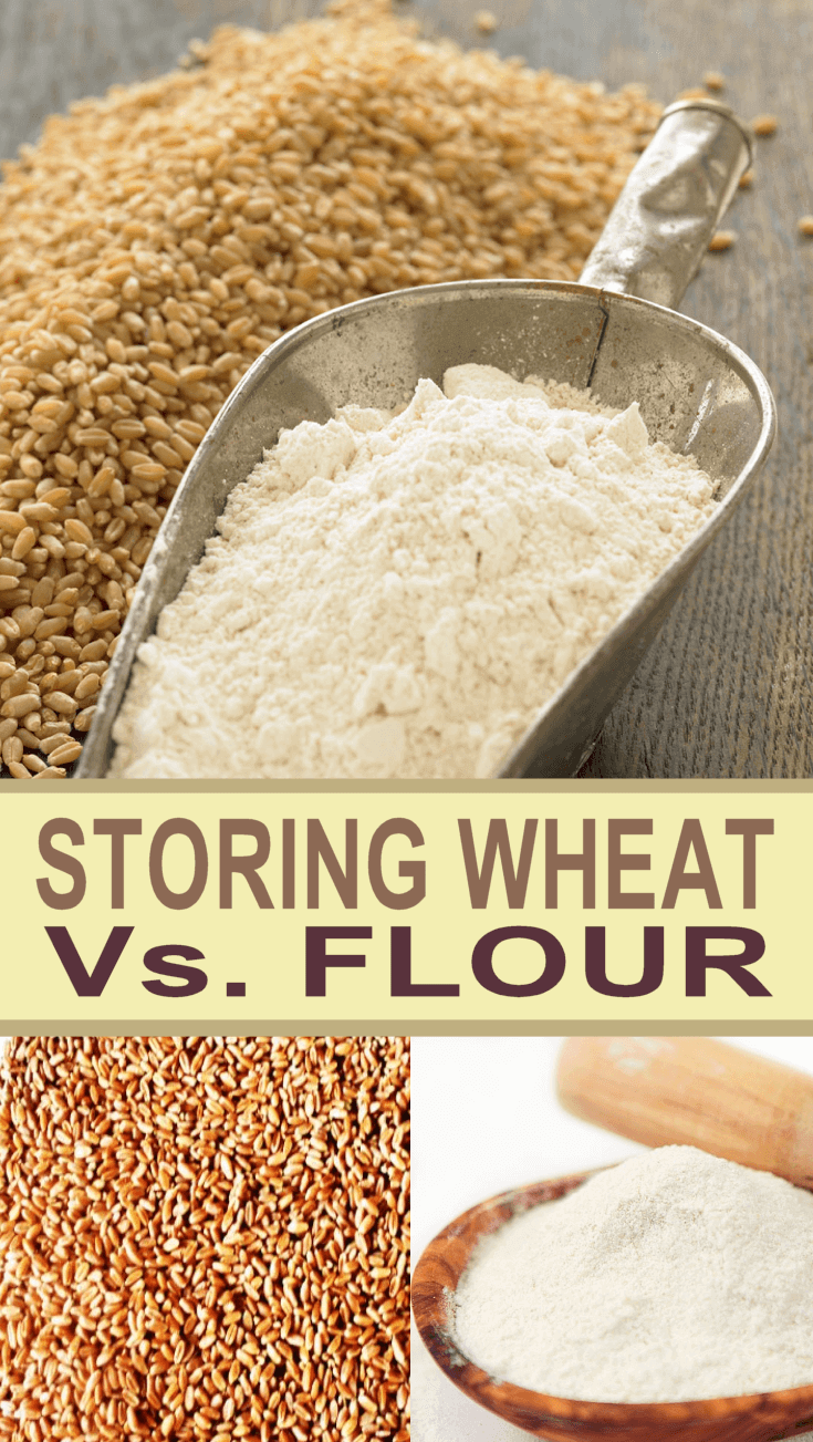 Should I Store Wheat Berries Or Flour