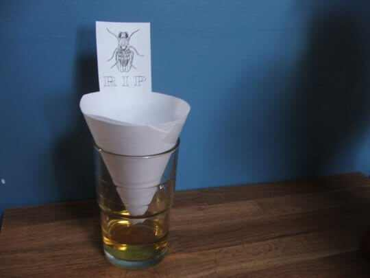 10 ingenious diy mosquito and fly traps. Black Bedroom Furniture Sets. Home Design Ideas